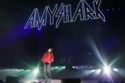 AmyShark2