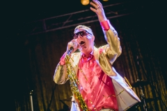Me_First_and_the_Gimme_Gimmes_Sydney_15
