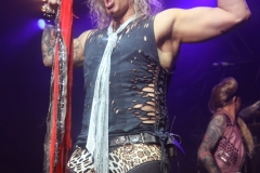 SteelPanther41